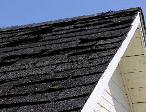 10 Signs That You May Need Roofing Repair Services